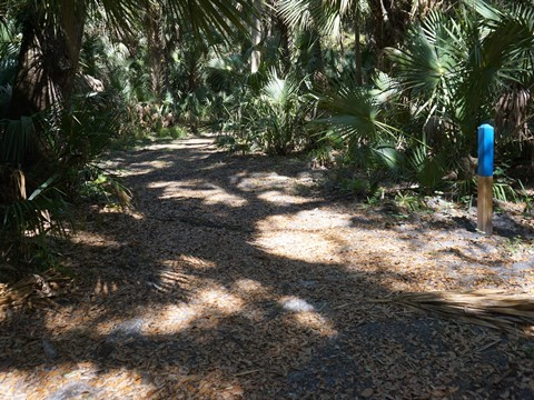 Spring-to-Spring Trail, lake monroe park, bike Volusia County